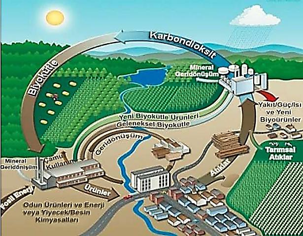biyoenerji santrali ile ilgili görsel sonucu
