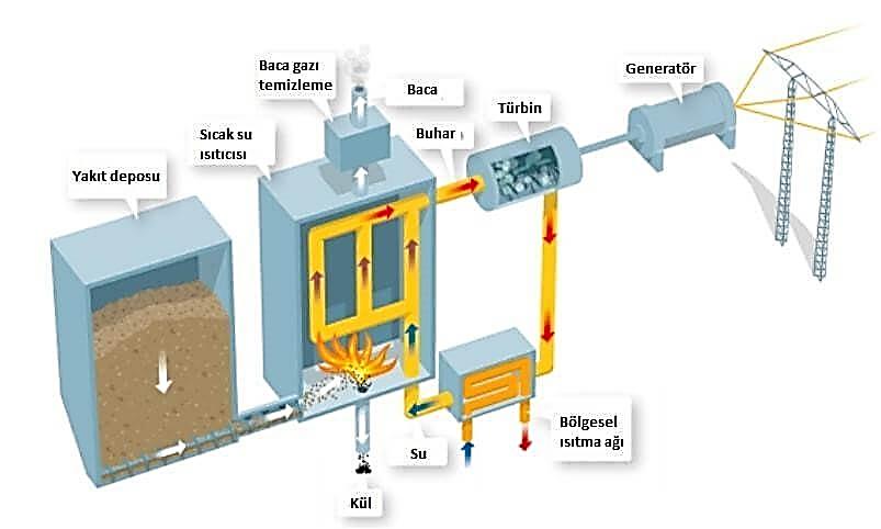 Biyokütle-enerji-santrali-nedir-1.jpg