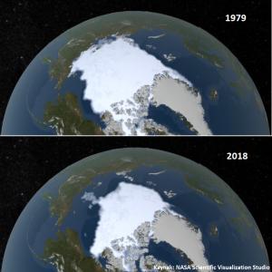 https://sarkac.org/wp-content/uploads/2019/09/arctic-seaice-300x300.png